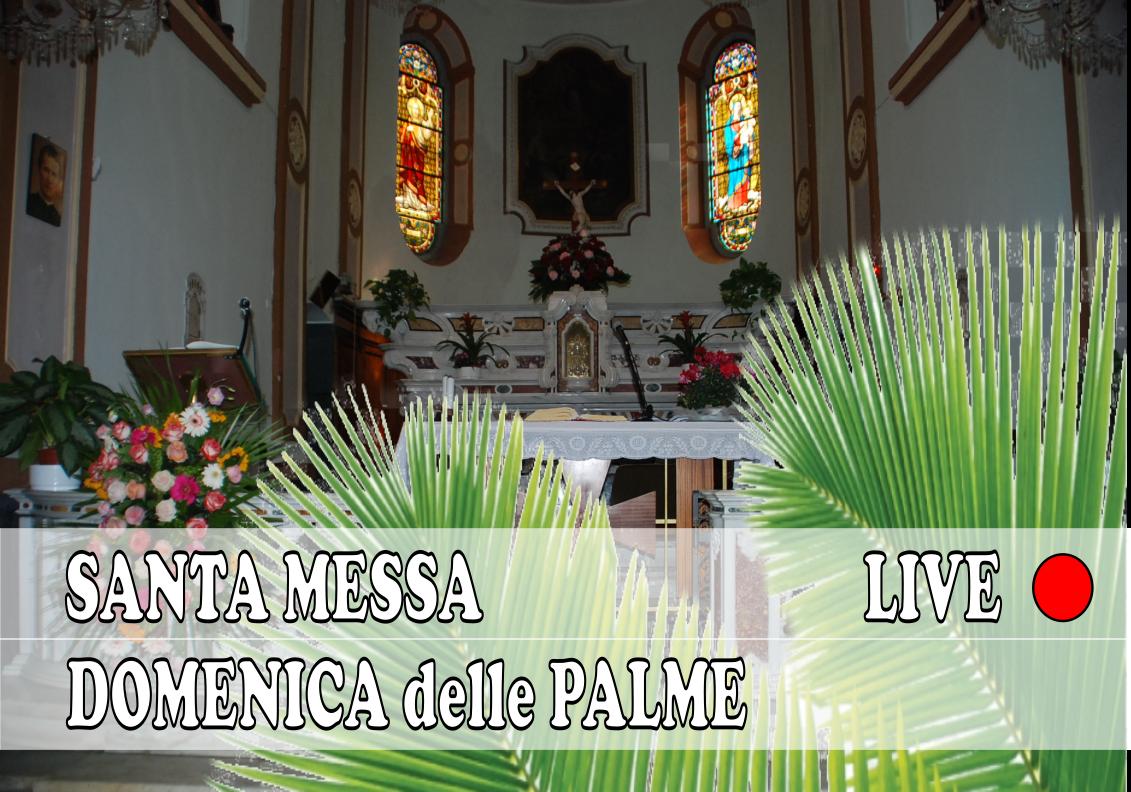S. Messa Domenica delle Palme